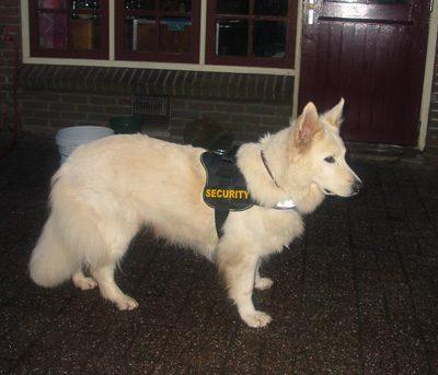 Romy in haar bewakingsoutfit